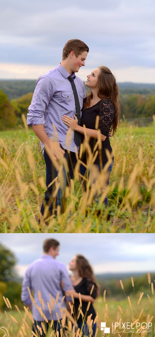 Youngstown engagement session,Youngstown wedding photographer,farm,farm engagement session,