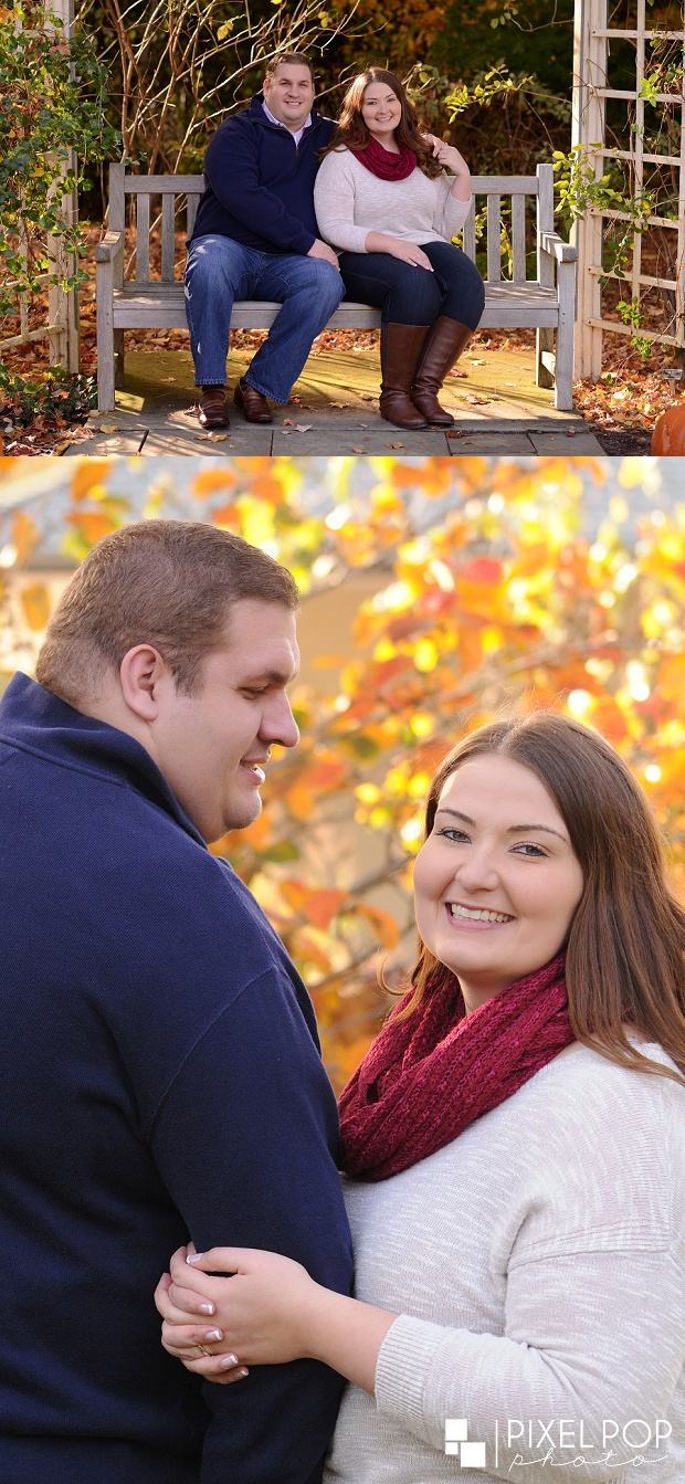 Cinderella Bridge,Fellows Riverside Gardens,Mill Creek Park,Silver Bridge,The Rose Gardens,Youngstown engagement,Youngstown engagement session,Youngstown wedding photographer,
