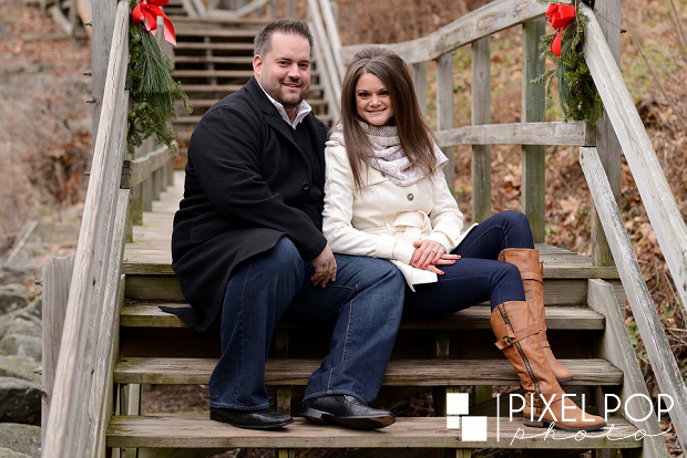 Fellows Riverside Gardens,Mill Creek Park,The Rose Gardens,Youngstown wedding photographer,winter engagement session,