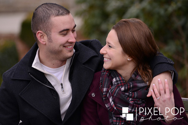 Fellows Riverside Gardens,Mill Creek Park,The Old Log Cabin,The Rose Gardens,Youngstown wedding photographer,winter engagement session,