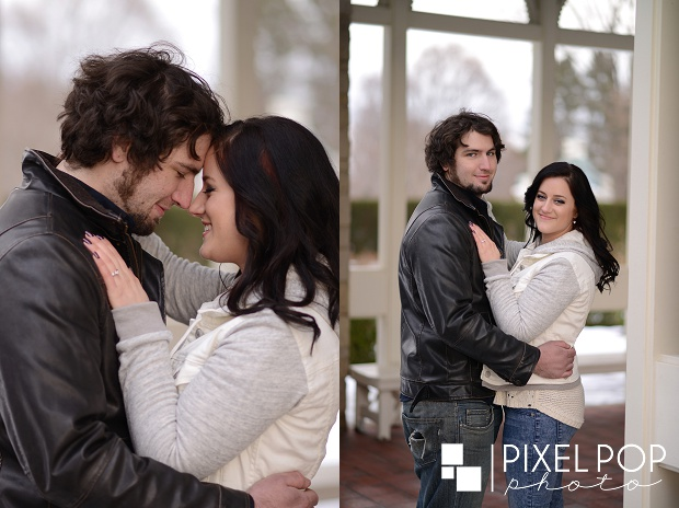 Fellows Riverside Gardens,Lanterman's Mill,Mill Creek Park,The Rose Gardens,Youngstown wedding photographer,winter engagement session,