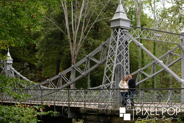 Boardman senior photographers,Boardman wedding photographers,Cinderella Bridge engagement session,Daffodil Meadow Mill Creek Park,Fellows Riverside Gardens engagement session,Mill Creek Park engagement session,Pixel Pop Photography,Silver Bridge Mill Creek Park engagement session,The Rose Gardens engagement session,Youngstown engagement session,Youngstown wedding photographers,