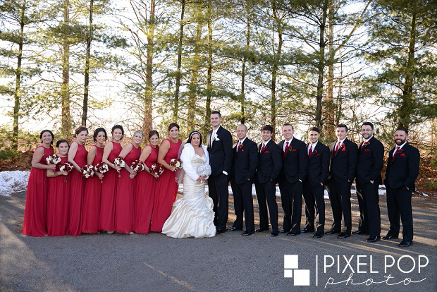 Pixel-Pop-Photography-Youngstown-wedding-photographers-Boardman-wedding-photographers-Saint-John-Greek-Orthodox-Church-wedding-Boardman-Park-wedding-The-Lake-Club-of-Ohio-wedding-reception0039.jpg