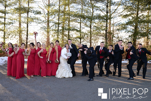 Pixel-Pop-Photography-Youngstown-wedding-photographers-Boardman-wedding-photographers-Saint-John-Greek-Orthodox-Church-wedding-Boardman-Park-wedding-The-Lake-Club-of-Ohio-wedding-reception0040.jpg