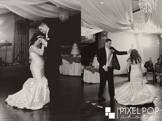 Pixel-Pop-Photography-Youngstown-wedding-photographers-Boardman-wedding-photographers-Saint-John-Greek-Orthodox-Church-wedding-Boardman-Park-wedding-The-Lake-Club-of-Ohio-wedding-reception0050.jpg
