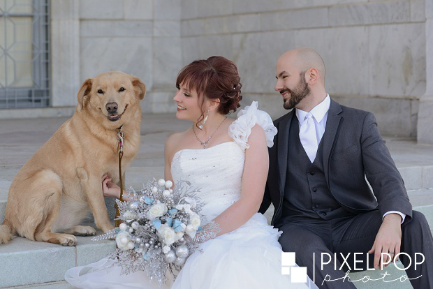 Boardman dog photographers,Boardman wedding photographers,Pixel Pop Photo,Pixel Pop Photography,The Butler Institute of American Art wedding,Youngstown day after wedding session,Youngstown dog photographers,Youngstown wedding photographers,