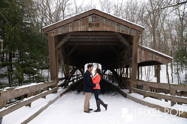 Boardman dog photographers,Boardman wedding photographers,Lanterman's Mill engagement session,Mill Creek Park engagement session,Pixel Pop Photo,Pixel Pop Photography,The suspension bridge in Mill Creek Park engagement session,Youngstown dog photographers,Youngstown engagement session,Youngstown photographers,Youngstown wedding photographer,Youngstown winter engagement session,the cinderella Bridge engagement session,