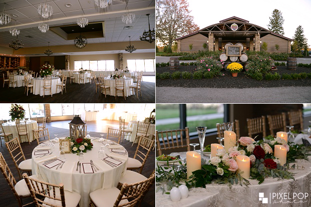 Best Youngstown wedding photographers,Boardman wedding photographers,Pixel Pop Photo,Pixel Pop Photography,St. Rose Catholic Church wedding,The Vineyards at Pine Lake wedding,The Vineyards at Pine Lake wedding reception,Youngstown photographers,Youngstown wedding photographers,