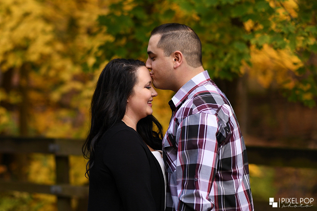 Boardman wedding photographers,Cinderella Bridge engagement session,Lanterman's Mill engagement session,Mill Creek Park engagement session,Pixel Pop Photo,Pixel Pop Photography,Youngstown engagement,Youngstown wedding photographers,